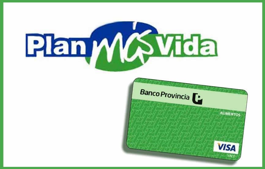 Cuando se Carga la tarjeta visa verde